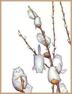 Willowy Kitties, by morreth on LJ cute whimsical illustration of willow catkins made of cats I Love Cats, Crazy Cats, Cute Cats, Funny Kittens, Adorable Kittens, Animals Watercolor, Art Mignon, Illustration Art, Illustrations