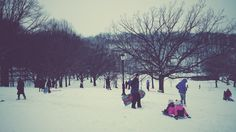 Inwood Park after the snow #nyc #vsco #fall