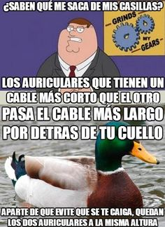 31 consejos de El pato Consejero - Taringa! Memes, Life Hacks, Humor, Tips, Lifebuoy, Good Advice, Fun Facts, Ducks, Funny Humor Quotes