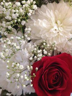 Wedding Anniversary Flowers  Red Roses, White Mums, White Baby's Breath