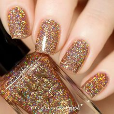 Shop Fun Lacquer Royal Chapel Nail Polish (Christmas 2014 Collection) on Live Love Polish. Free express shipping on orders over $20!