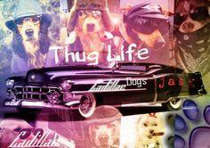 "Thug life ""Cadillac Dogs"""