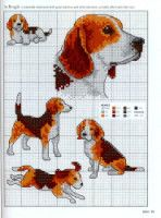 """Gallery.ru / patrizia61 - Альбом """"Picture Your Pet in Cross Stitch"""""""