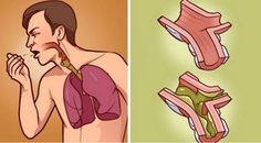 The accumulation of mucus in the lungs leads to breathing difficulties and great discomfort. In these cases, most people reach for over-the-counter medications, but we recommend the following natural remedy: Ingredients 1 tablespoon of apple cider vinegar Ginger 1 tablespoon of coconut oil 1 teaspoon of honey Method of preparation: Cut the ginger into pieces, […]
