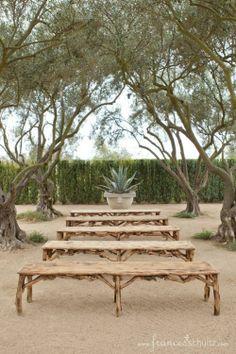 Outdoor Wedding - Benches in Olive Grove - Rancho La Zaca