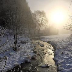 early morning hike after a very cold night - if the sun breaks the #fog #winterwanderung #winter #frozen #snow #winterwonderland #hiking #bach #lenne #stream #ig_nature #ig_nrw #naturephotography #bestgermanypics #sauerland #hochsauerland #sauerland_impressionen