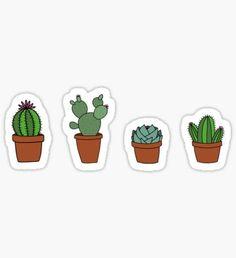 Cacti Pegatina