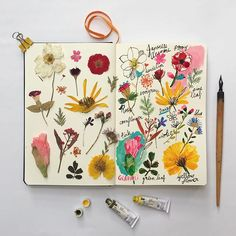 Sketchbook inspiration. #carolyngavinsketchbook #carolyngavin #floral #flowers #plants #botanicals #botanical #dscolor