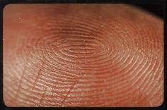 Close-up of my fingerprint.