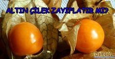 altın çilek ile zayıflama Iftar, Viera, Eggs, Vegetables, Breakfast, Food, Morning Coffee, Essen, Egg