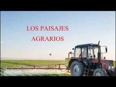Paisajes agrarios: poblamiento y explotación económica.