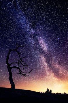 photography night sky