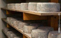 Recorrido por algunos de los 15 quesos más caros del mundo. Sus características, procesos de elaboración e historia...