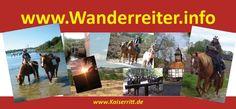 Reitabzeichen Basispass und Reitpass Prüfungen in Niedersachsen, Lüneburger Heide am 25.3.-31.3.2016