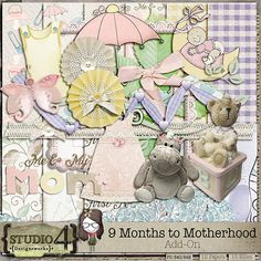 9 Months to Motherhood - Add-On