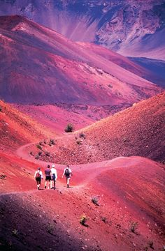 Hiking Haleakala, Maui, Hawaii. An amazing albeit hot (depending on what time of year you go) hike through the Crater.