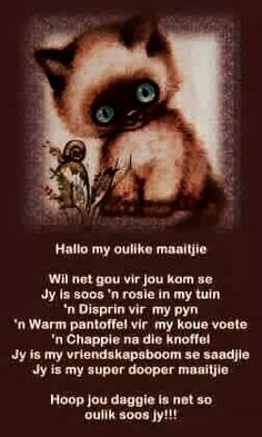 hallo maatjie Cute Quotes, Best Quotes, Funny Quotes, Qoutes, Good Night Quotes, Good Morning Good Night, Lekker Dag, Afrikaanse Quotes, Goeie More