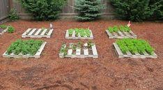 Využite palety na záhrade nielen na pestovanie ovocia či zeleniny