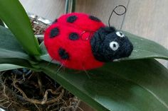 Check out this item in my Etsy shop https://www.etsy.com/listing/271330014/wool-felted-ladybug-with-wire-legs-and