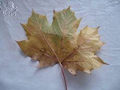 Die Bastel-Elfe, alles rund ums Basteln - Rosenstrauß aus Ahornblätter