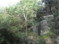 día en Sapucai