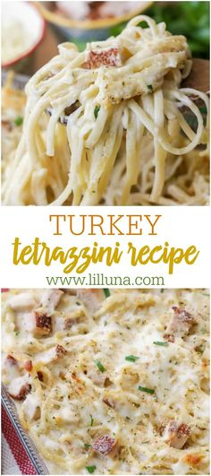 This creamy Turkey Tetrazzini is a simple and flavorful pasta casserole dish It s perfect for using leftover holiday turkey but makes for a crowd favorite year round turkeytetrazzini tetrazinni turkeypastacasserole thanksgivingleftovers turkey Easy Leftover Turkey Recipes, Leftovers Recipes, Dinner Recipes, Leftover Turkey Casserole, Cooked Turkey Recipes, Turkey Leftovers, Stuffing Recipes, Cooking Turkey, Pumpkin Recipes