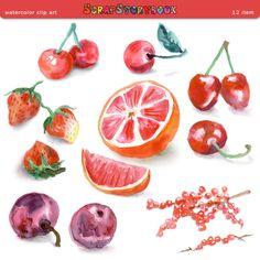 Clip Art Printable Clip Art watercolor lavender sweets digital printable clipart 300 dpi fruit clip art item cherry plum orange sour