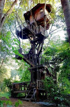 5 aventuras en Tailandia probablemente nunca has oído hablar de: Vivir en una casa del árbol a Chiang Mai, pero evita las tirolinas y cafés de lujo e ir directamente a Doi Saket, en las afueras de la ciudad. A continuación, encontrará un mundo que habla a su niño interior: casas en los árboles reales, viven en la densa selva exuberante