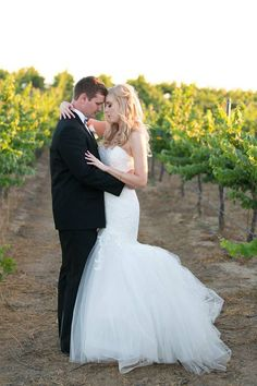 The bride and groom in the vines during their vineyard wedding at Mount Palomar Winery in Temecula, California. #mountpalomarwinery