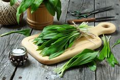 Wild garlic is incredibly delicious and healthy. Unfortunately, he is only a few weeks away from us … - Healthy Eat Healthy Life, Healthy Eating, Wild Garlic, Vitamins And Minerals, Quick Easy Meals, Celery, Herbalism, Healthy Recipes, Easy Recipes