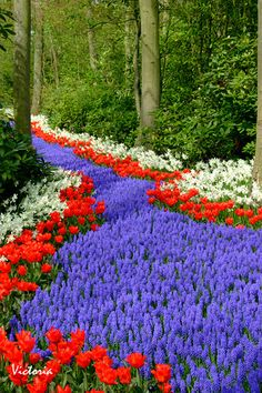Flickr Search: beautiful gardens | Flickr - Photo Sharing!