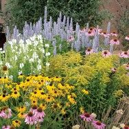 High altitude, pre-planned, pollinator gardens -- to keep the bees happy & away while I'm enjoying my decks.