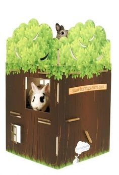 building this for my bunny... actually my boyfriend will build it, but that's kind of the same thing