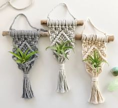Good No Cost Macrame Air Plant Hanger // Driftwood Air Plant Holder // Mini Macrame Plant Han. Suggestions When there is small room for the keeping flowerpots, holding flowerpots certainly are a good Alterna Hanging Air Plants, Hanging Plant Wall, Macrame Hanging Planter, Macrame Plant Holder, Macrame Plant Hangers, Plant Holders, Crochet Plant Hanger, Driftwood Macrame, Macrame Art