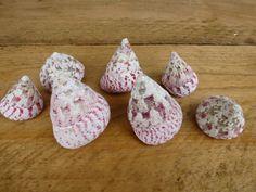 tronka schelpen in roze tinten
