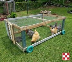 Summary: At the onset of building chicken coops, one must lay out chicken coop blueprints. The chicken coop designs should cater to all the aspects vital for chicken farming. Chicken Coop On Wheels, Walk In Chicken Coop, Chicken Coop Pallets, Mobile Chicken Coop, Diy Chicken Coop Plans, Chicken Cages, Chicken Pen, Portable Chicken Coop, Chicken Tractors