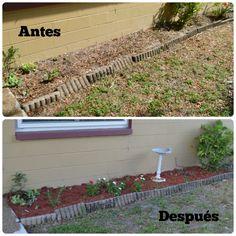 Como crear un jardín hermoso y sin esfuerzo #MiJardinalidad #ad