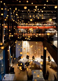 Sky Restaurant, Modern Asian, Waterfront Wedding, Wedding Reception, Sydney, Seafood, Places To Go, Interiors, Fish