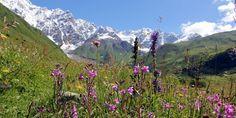 Grúzia a Kaukázus lábánál – Világutazó