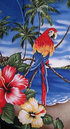 Colorful Macaws Hawaiian Beach Summer Scene Tough iPhone 6 Case Parrot Painting, Tropical Art, Bird Pictures, Mexican Art, Colorful Birds, Bird Art, Beautiful Birds, Watercolor Paintings, Art Projects