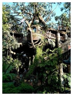 """""""Cool tree house"""" by author-of-isabelle-lupin on Polyvore featuring interior, interiors, interior design, home, home decor and interior decorating"""