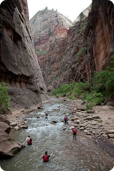 UT: Zion Adventure Company - hiking the narrows