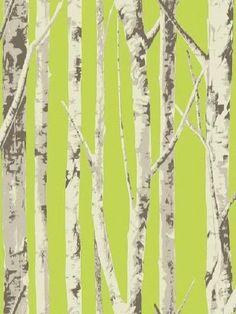 EH61004 - Modern (Green) Birch Tree Wallpaper from Eco Chic, SBK14256