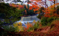 Tahquamenon Falls State Park and campground, near Paradise Michigan, Whitefish Point, Lake Superior,Michigans Upper Peninsula
