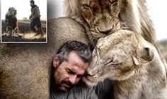 Pictures show bond between a real-life lion whisperer and his pride