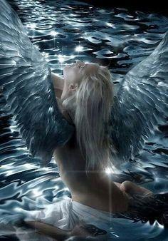 aesthetic, fantastic, and fantasy εικόνα Real Angels, Dark Angels, Angels Among Us, Angels And Demons, Fallen Angels, Ange Demon, Demon Art, Dark Fantasy, Fantasy Art
