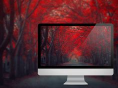 29 Autumn Wallpapers For Your Desktop