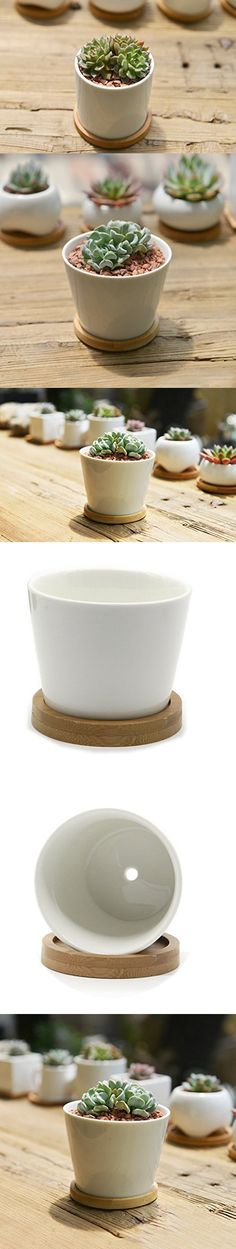 SUN-E Modern White Ceramic Succulent Planter Pots / Mini Flower Plant Containers with Bamboo Saucers (Round)