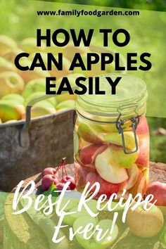 Learn how to can apples easily today! Discover the best recipe ever, only on this pin! Canning Recipes, Kitchen Recipes, Beef Recipes, Canning Tips, Recipies, Family Meals, Kids Meals, Canned Applesauce, Canning Apples