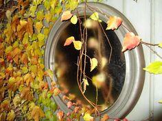 Aan de tuinberging 2 oude spiegels waar de wingerd nu mooi rond groeit. Nog altijd blij dat ik ze gehangen heb. Geeft een mooie diepte aan de tuin.